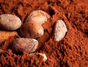 cacao-alzheimer